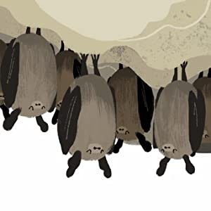 chilly places bats spend winter hanging snoozing roost. They store warm fat backs bellies energy