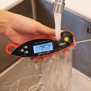 waterproof thermometer