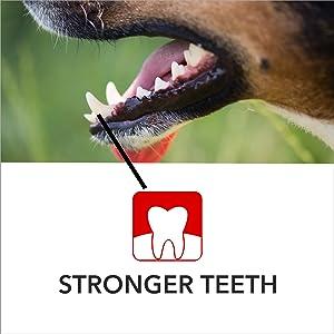 absolute,absolute calcium,calcium,calcium for dogs,supplements,dog supplements