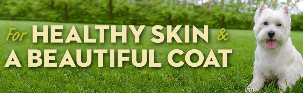 avoderm natural senior dog food for healthy skin and beautiful coat
