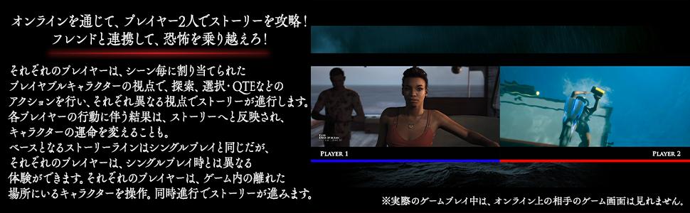 オンラインを通じて、プレイヤー2人でストーリーを攻略!