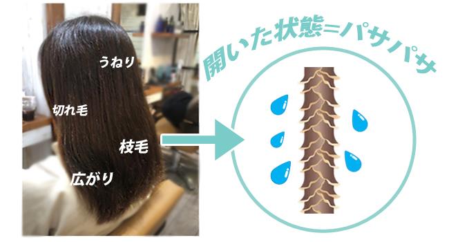 ヘアドライヤー モノクローム コイズミ 髪質改善 ストレート 速乾