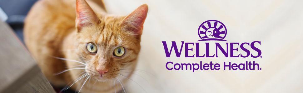 Wellness Complete Health Dry Cat Food