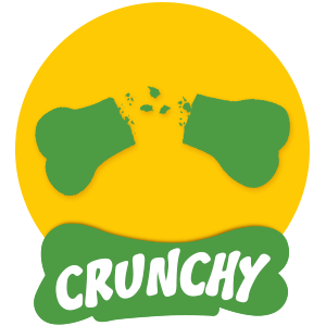 Crunchy food for dog