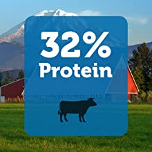 natural balance limited ingredient high protein dog food for active dogs, beef dog food