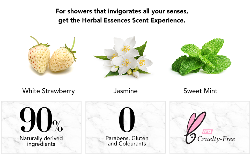sweet mint jasmine
