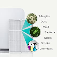 Alen 75i filter TRUE hepa filters allergies Dust Mold Bacteria Odors Smoke Chemicals