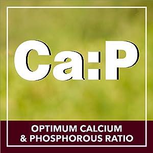OPTIMUM CALCIUM & PHOSPHOROUS RATIO