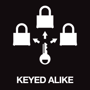long padlock, long shackle padlock, padlock, big padlock, master lock, padlock with key, locks, lock