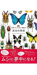 世界でいちばん素敵な昆虫の教室