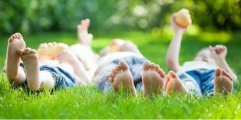 bioadvanced, grass, lawn care