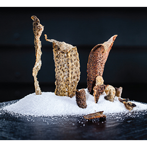 ウナギ サケ タラ 魚の皮 パリパリ 糖タンパク質