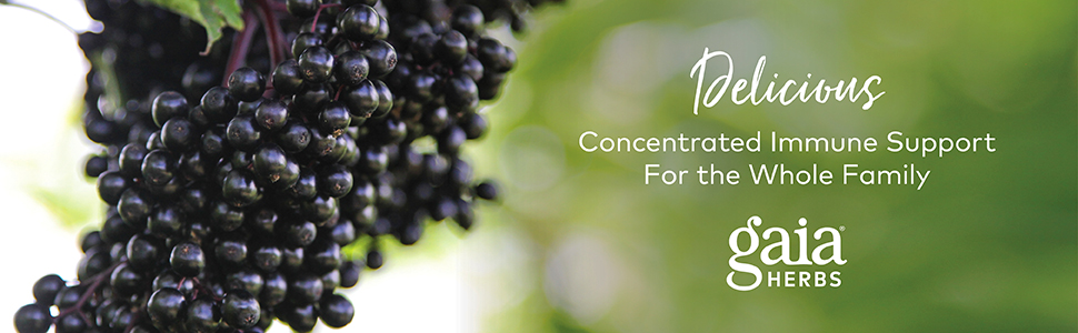 Gaia Herbs Black Elderberry - Delicious Concentrated Immune Support for the Whole Family