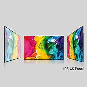 IPS 4K Display