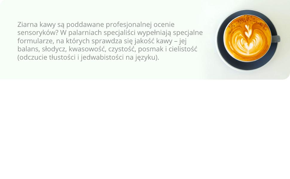 zelmer; cisnieniowy ekspres do kawy; ZCM7255;  kawa nespresso