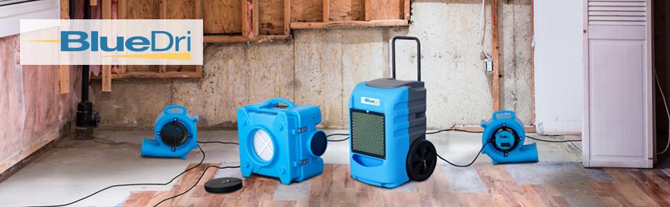 Dehumidifiers, basements room pt drain hose efficient 1000 sq ft feet portable remove odor remover