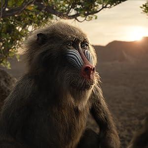 zazu, disney, rey leon