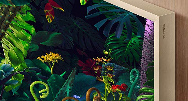 Close-up of The Frame with colorful jungle artwork