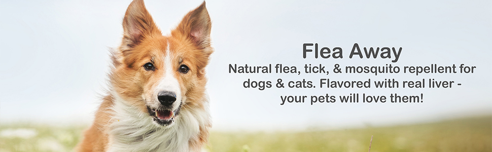 Guardians choice all natural flea tick and mosquito deterrent for dogs - 100 soft chews