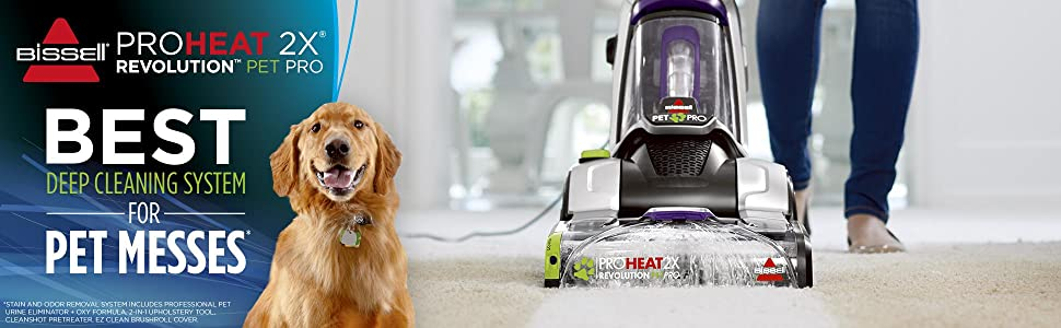 carpet removerpet stain cleaner