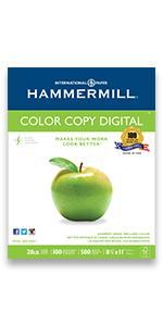 o apple paper, presentation, premium, color printing, resumes, flyers, digital,printer paper