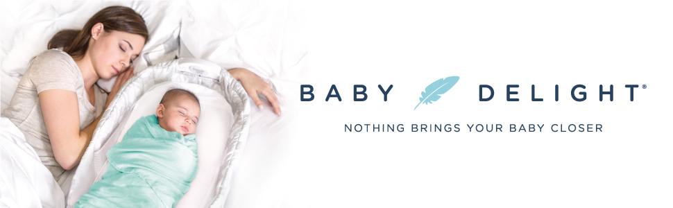 Amazon Com Baby Delight Snuggle Nest Harmony Infant
