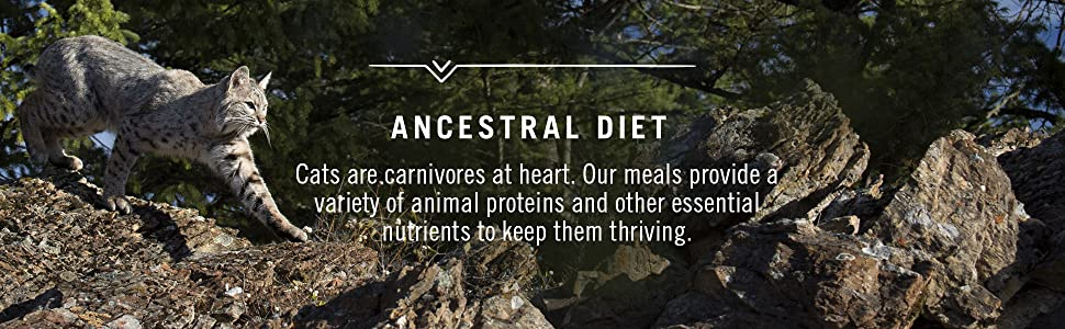 Ancestral Diet, Nourishment They Crave, Wild Cat Food, Cat Food Tray, Easy
