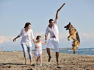 family dog, family cat, healthy
