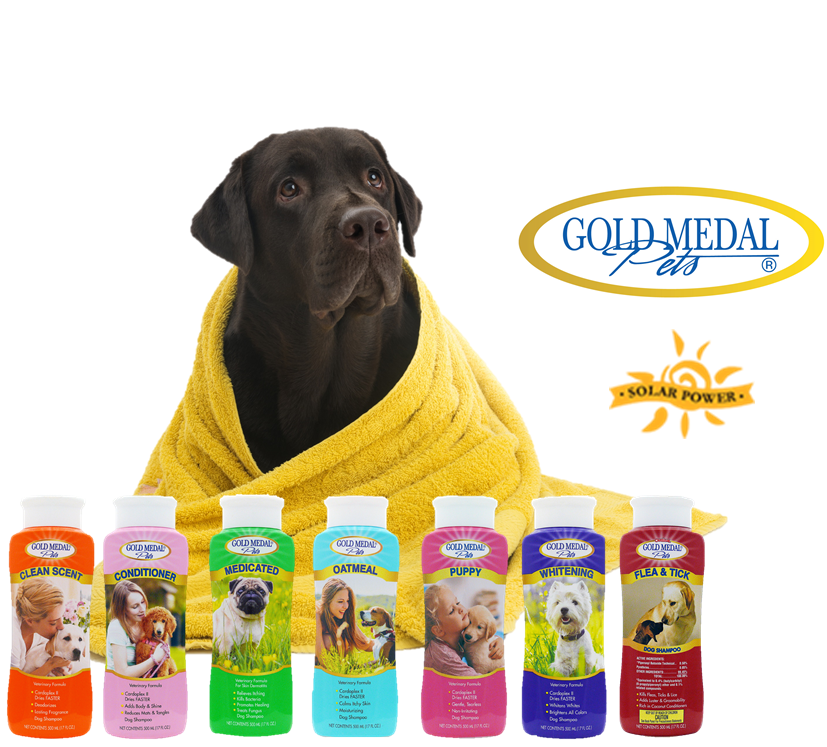 Amazon.com : Gold Medal Pets Whitening Shampoo with