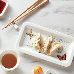 Butterfly meadow, asian food, lenox, lenox dinnerware, lenox dishes, butterfly dishes