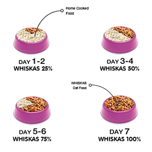 How to feed whiskas