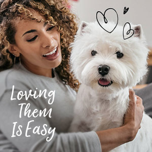 Loving them is Easy, Westie, Small Dog, Little Dog, Adult Dog Food, Easy Peel Tray