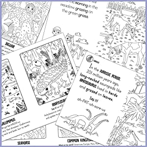 Collage of coloring pages from Paint with Water Dinosaurs, Animals and Horses and Unicorns