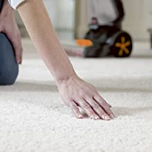 carpet cleaner, carpet shampoo, deep cleaner, carpet washer, rug doctor, hoover, vacuum cleaner