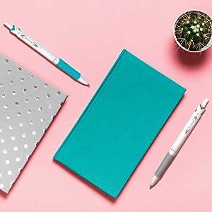 Pilot acroball, gel pens, papermate, retractable, ball point, fountain pens, fiskars, best gel pens