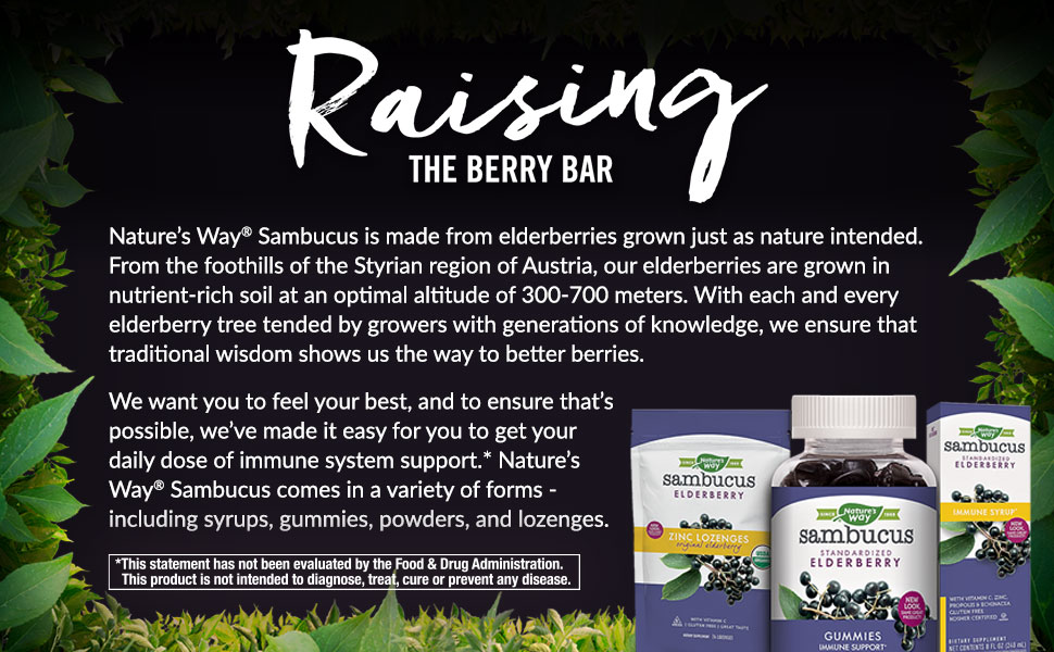 raising the berry bar