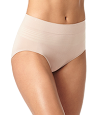 warner's brief panty, womens briefs, seamless panty