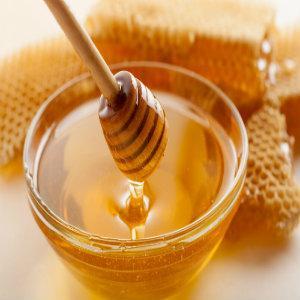 bee blanket;honey heater;honey warmer;heat honey;warm honey;bucket heater;pail heaters;honey