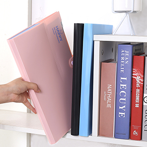 Amazon.com: Organizador de carpetas de archivos, 12 ...
