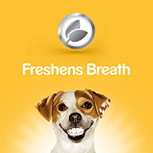Freshens Breath, Dog Breath, Doggie Toothbrush, Toothpaste, Puppy, Healthy Treats, Dog Snacks