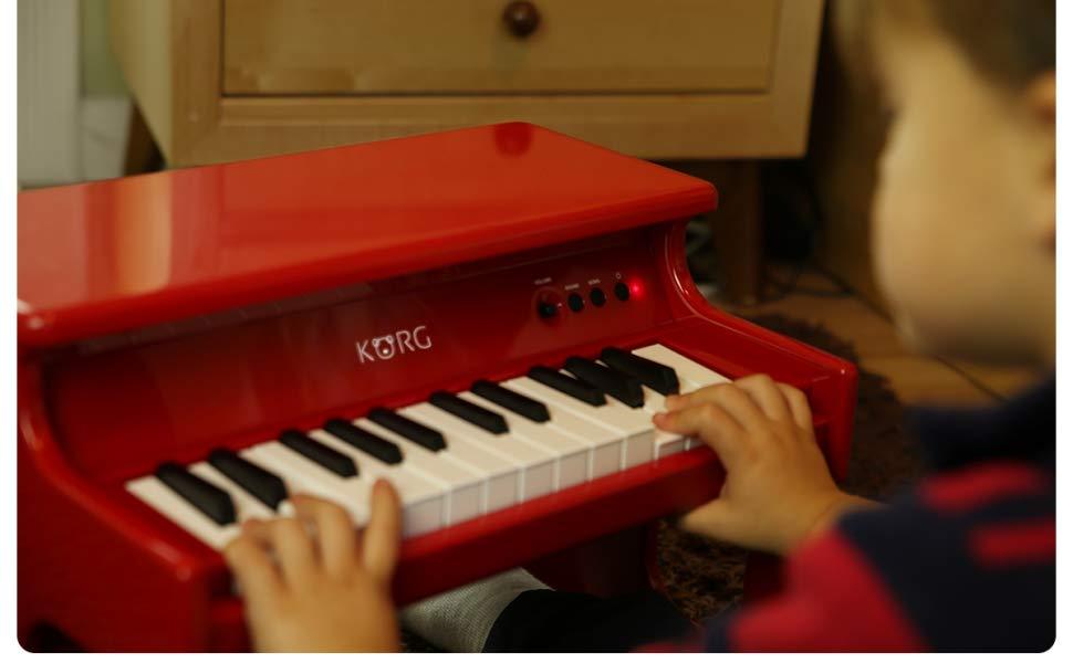 Korg Tiny Piano - Close up2