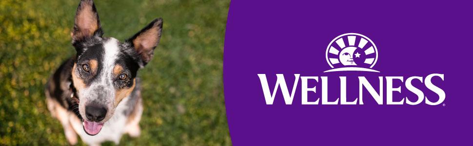 Wellness Natural Pet Food Wellness WellBars WellBites Dog Treats