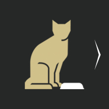 Feed LiveClear dry cat food daily. Illustration.