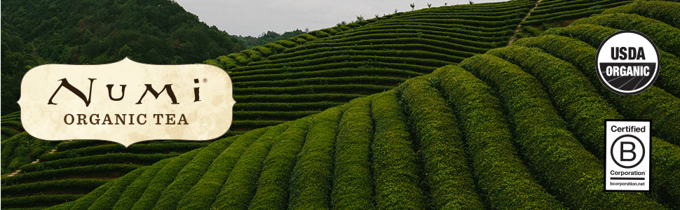 numi organic tea world of tea by mood gift set for women mom box basket variety pack tea bags green
