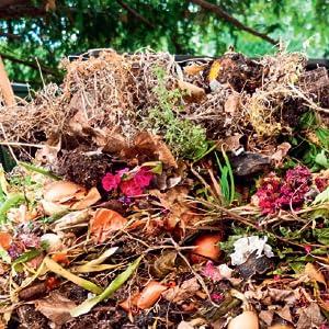 No-Dig Garden Care