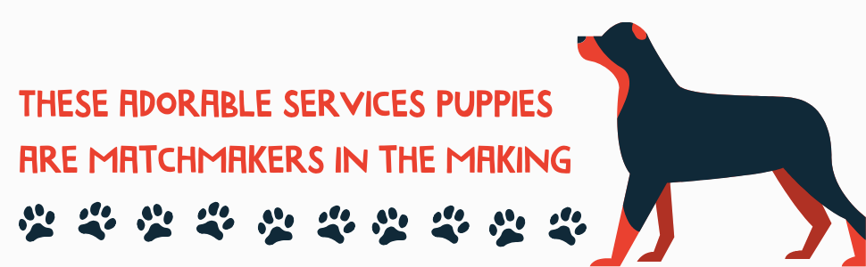 These adorable services puppies are matchmakers in the making