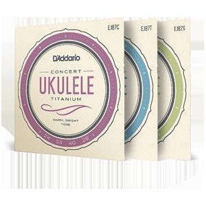 Ukulele Family