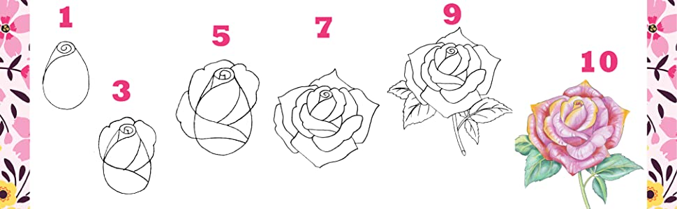 10 Step Drawing Flowers Draw 75 Flowers In 10 Easy Steps Amazon Co Uk Woodin Mary Books
