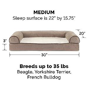 dog; cat; bed; sofa; couch; cream; medium