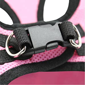Close Up of Three Security features, Velcro, Double D Rings and Buckle on Back of Harness